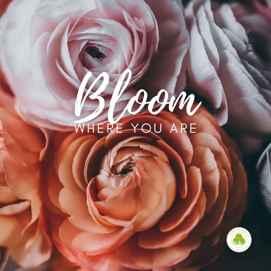 bloom-where-you-are
