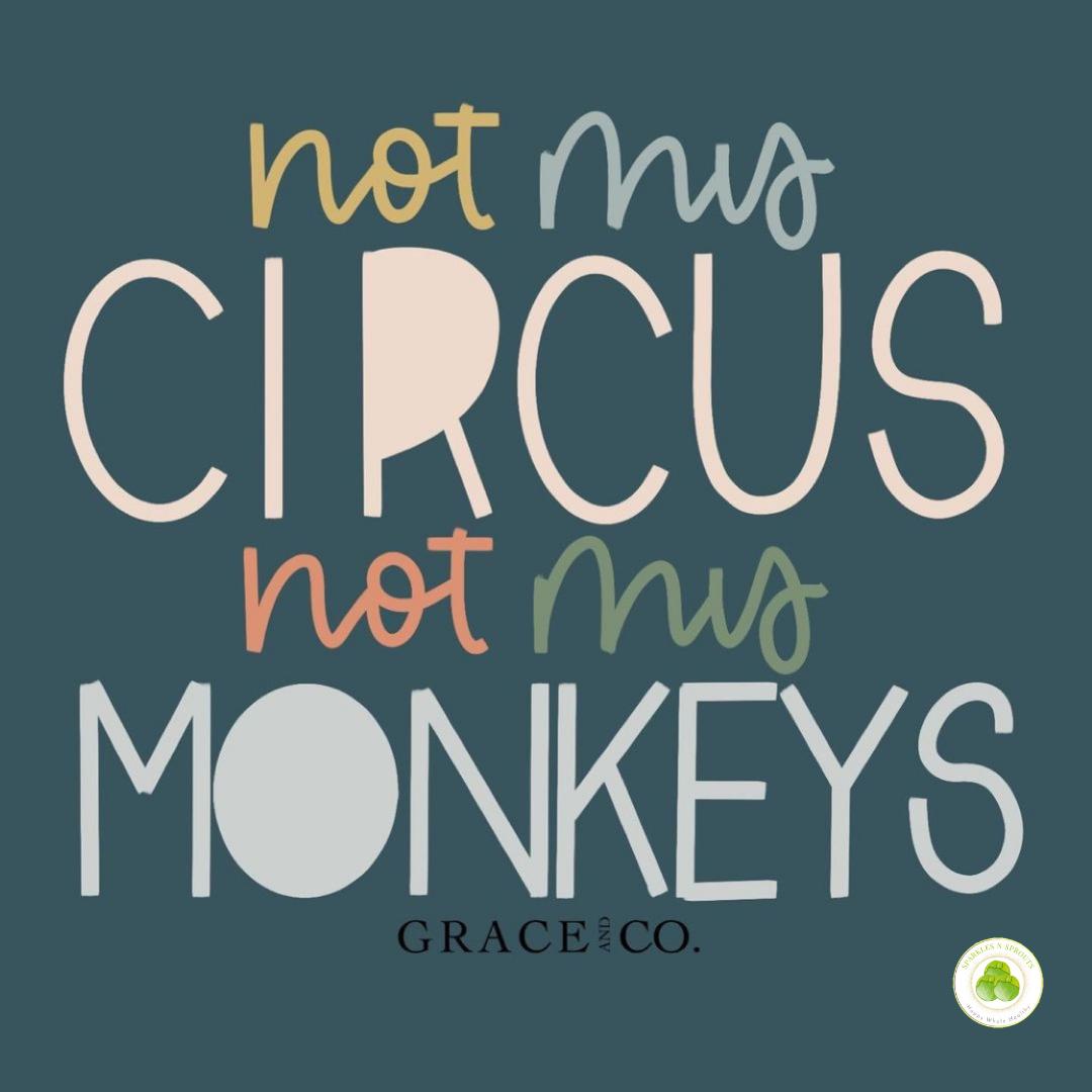not-circus-not-monkey