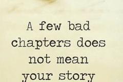 a few bad chapters