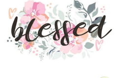 blessed-pink-gray