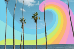 rainbow-palm-trees