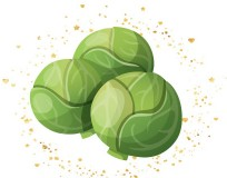 sprouts-4